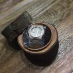 kayu matoa (3)