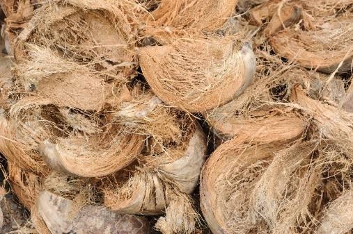 Coconut Coir Husk