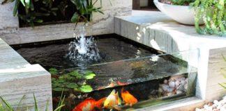 lem-untuk-kolam-ikan