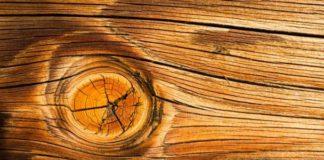 mata kayu