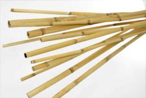 stik bambu