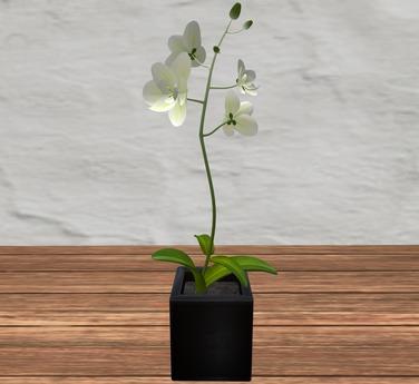 vase charcoal (2)